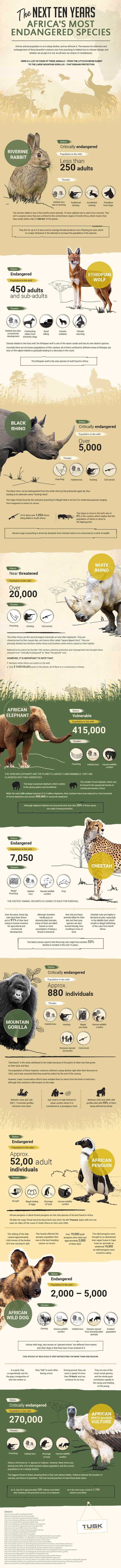 endangered wildlife species in africa Africa's Endangered Wildlife Species Tusk Infographic Africa Most Endangered Species