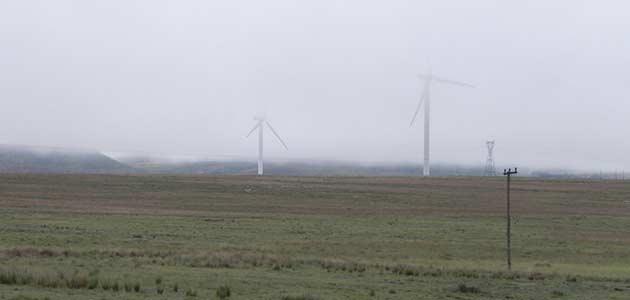 Carnage on Eastern Cape Vultures Vulpro EC Windmills