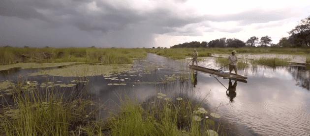 9-1-4-Okavango-Film