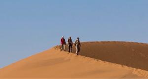Business-Namibia-Header