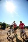 Clos Malverne Bike & Saddle LR 4