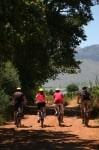 Clos Malverne Bike & Saddle LR7