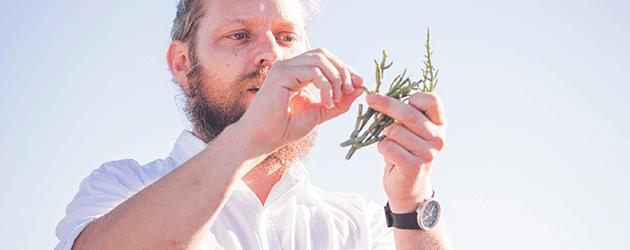 Innovative Dining: The Flavours Of Fynbos Kobus van der Merwe Herb